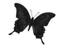 Butterfly fantasy Stock Images