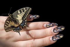 The butterfly and a female hand. Royalty Free Stock Images