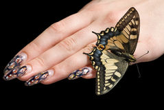 The butterfly and a female hand. Royalty Free Stock Photo