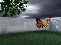 Butterfly in fenced-in yard. A three-dimensional view of a colorful monarch butterfly flying over thick green grass of a fenced-in yard or lawn Stock Image