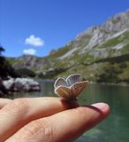 Butterfly at the finger. A small butterfly at my finger, near the lake in Zabljak, Montenegro Royalty Free Stock Photo