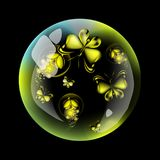 Butterfly and firefly into the bubble. Yellow insect on the dark background Royalty Free Stock Photography