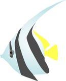 Butterfly fish digital illustration Stock Photos