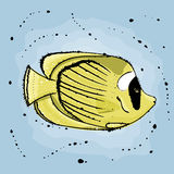 Butterfly fish. Hand drawn  illustration in watercolor style Stock Photography