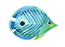 Butterfly fish. Watercolor. Royalty Free Stock Image