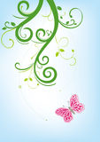 butterfly and floral background Stock Images