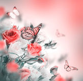 Butterfly. Floral background. royalty free stock photos