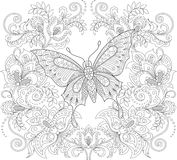 Butterfly and floral ornament. Adult antistress coloring page Stock Photos