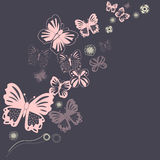 Butterfly and floral ornament Royalty Free Stock Image