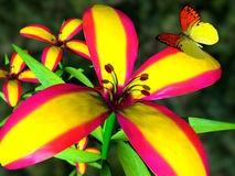 Butterfly and flower. Scene of the butterfly and flower stock photography
