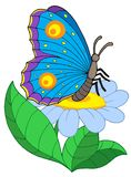 Butterfly with flower Royalty Free Stock Photo