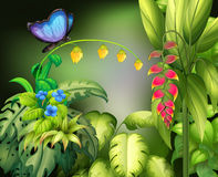 Butterfly and flower stock illustration
