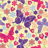Butterfly and Flower Seamless Pattern - Illustration Royalty Free Stock Photo