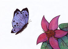 Butterfly and Flower (Zen Pictures, 2011) Royalty Free Stock Image
