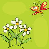 Butterfly and flowers. Summer background with funny butterfly and big Chamomile Royalty Free Stock Photo