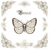 Butterfly and flowers drawing vintage engraving style Royalty Free Stock Image