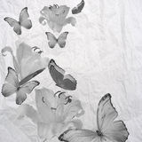 Butterfly and flowers  grunge Royalty Free Stock Photo