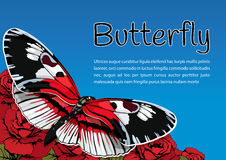 Butterfly on flowers of red roses on a blue sky background and space for text, vector banner, card, poster, flyer Stock Images