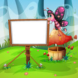 Butterfly flying and whiteboard Royalty Free Stock Images