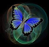 Butterfly on fractal background Royalty Free Stock Photo