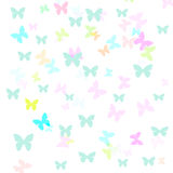 Butterfly gift wrap Stock Photo