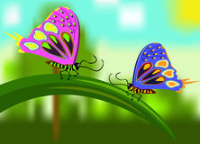 Butterfly girlfriends sitting on blade of grass. Stock Photography