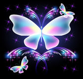 Butterfly and glowing salute Stock Photography