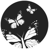 Butterfly, graphic style, hand drawn, black and white  vector illustration Royalty Free Stock Photos