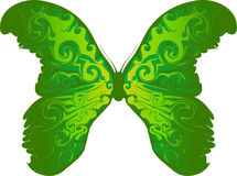 Butterfly Green Royalty Free Stock Photography
