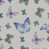 Butterfly 08 grey. Seamless pattern from butterflies, vector illustration, clip-art Royalty Free Stock Image