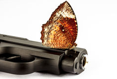 Butterfly and Gun Stock Photo
