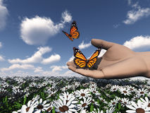 Butterfly in the hand. The beautiful butterfly in the hand Royalty Free Stock Images