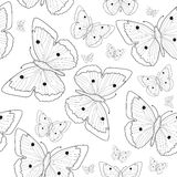 Butterfly hand drawing seamless pattern sketch. Black and white butterfly background. Vector illustration Stock Images