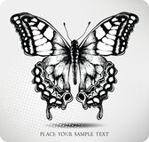 Butterfly hand drawing.Vector Royalty Free Stock Image