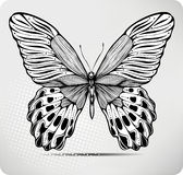 Butterfly, hand-drawing. Vector illustration. Royalty Free Stock Photography