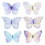 Butterfly hand painted watercolor collection on white background. Can be used for cards,wedding invitations,logo,printing on fabri Stock Photos