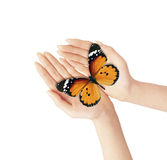 Butterfly and hands Royalty Free Stock Images