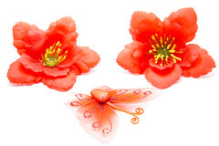 Butterfly with hibiscus blossom. On white background Royalty Free Stock Photos