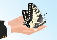 Butterfly in his hands Royalty Free Stock Photos