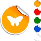 Butterfly  icon. Royalty Free Stock Photo