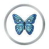 Butterfly icon in cartoon style isolated on white background. Insects symbol stock vector illustration. Royalty Free Stock Photos