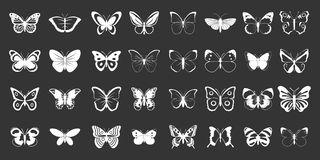 Butterfly icon set grey vector. Butterfly icon set vector white isolated on grey background Stock Photography