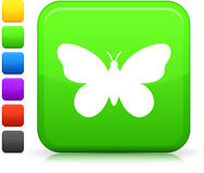 Butterfly icon on square internet button Royalty Free Stock Photography