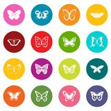 Butterfly icons many colors set Stock Images