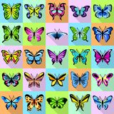 Butterfly icons set, flat style. Butterfly icons set. Flat illustration of 25 butterfly vector icons for web Royalty Free Stock Photos