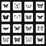 Butterfly icons set squares vector Stock Photography