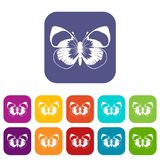 Butterfly icons set Stock Images