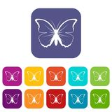 Butterfly icons set Royalty Free Stock Image