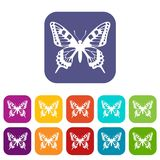 Butterfly icons set Stock Photography