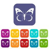 Butterfly icons set Royalty Free Stock Photo